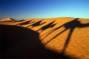 Une voix dans le désert? dans REFLEXIONS caravane-300x198